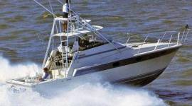 1986 Luhrs Open SF