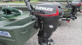 2019 EVINRUDE E-TEC 25 HP (E25DGTE)