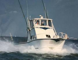"2000 Custom Fino Motion 43"" Catamaran"
