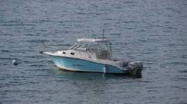 2007 Seaswirl Striper 2901