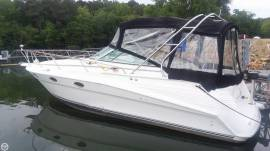 1994 Cruisers Rogue 3070